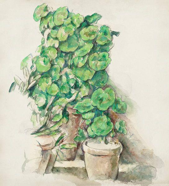 Cézanne, Geranien (ca. 1888-1890) von Atelier Liesjes