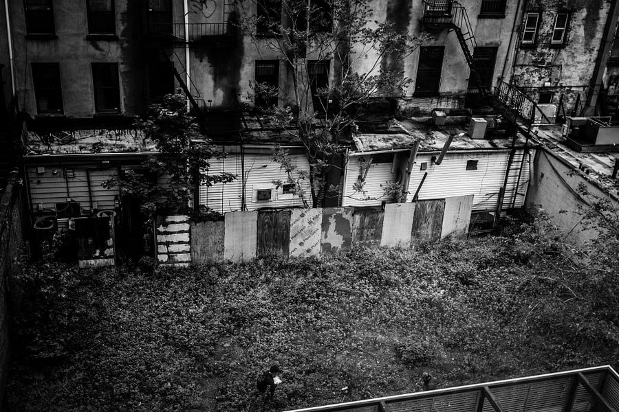 Lost in NYC van denk web