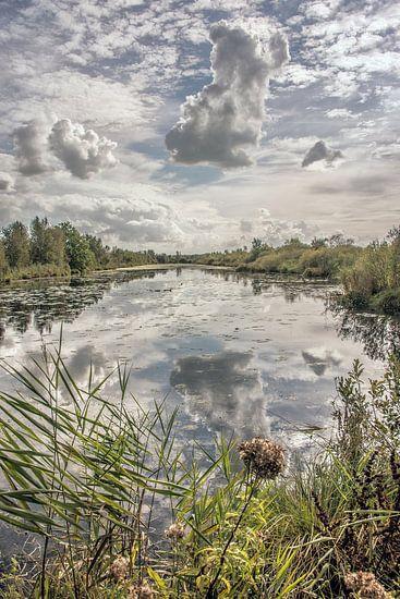 Spiegelende wolkenpartij in natuurgebied De Deelen in Friesland van Harrie Muis