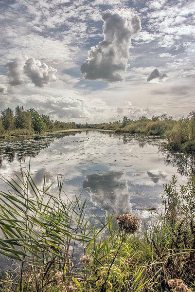 Spiegelende wolkenpartij in natuurgebied De Deelen in Friesland