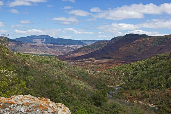 Rivier door de canyon in Zuid-Afrika