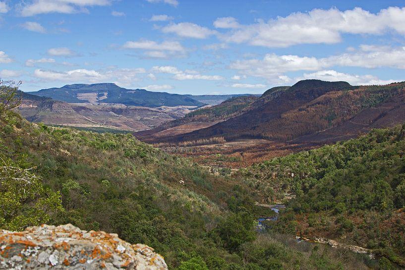 Rivier door de canyon in Zuid-Afrika van Discover Dutch Nature