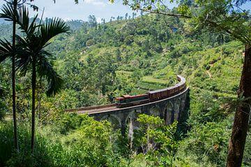 Trein door een landschap in Sri Lanka