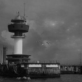 Lighthouse von Anne Seltmann