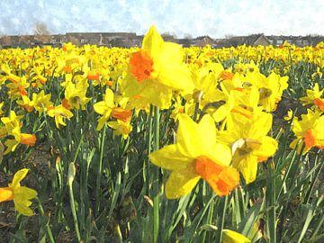 Daffodils van Floris De Mol