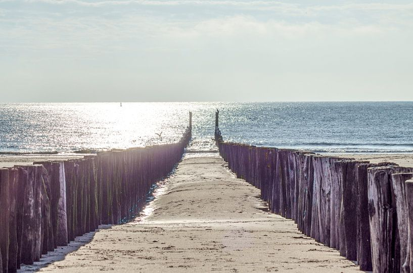 weg naar de zee van Natasja Claessens