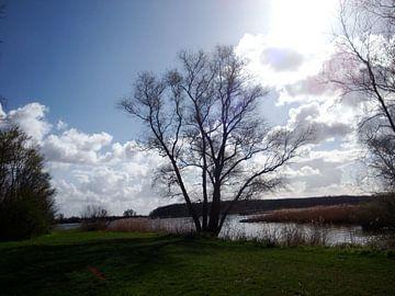Uitzicht op de Maas von Sanne Compeer