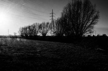 Ein nebliger Morgen auf den flämischen Feldern von Eline Willekens