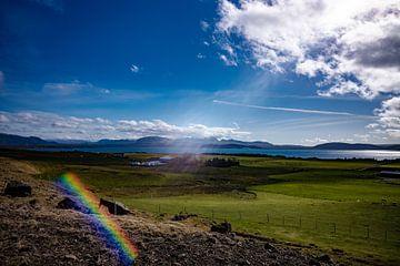 Island von Micha Tuschy
