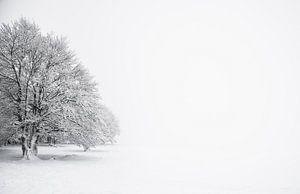 """""""Baken in de sneeuw"""" in de Vogezen"""