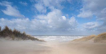 Treibender Sand! von Arjan van Duijvenboden