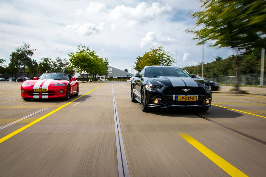 Dodge Viper en Ford Mustang van Sim Van Gyseghem