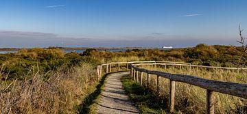 Uitzicht De Hors texel sur Texel360Fotografie Richard Heerschap