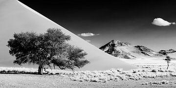 Dünenlandschaft Schwarzweiss von Denis Feiner