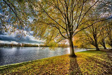 Ein ruhiger Ort in Amsterdam von Peter Bartelings
