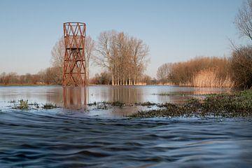 Het overstroomgebied van de Dommel in Sint Oedenrode
