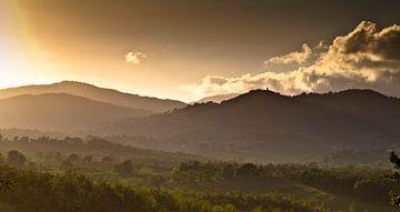 Hills of San Galgano van Bas Koning