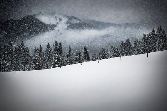 Bavarian Winter's Tale V