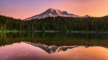 Zonsopkomst Mount Rainier, Washington State, Verenigde Staten van Henk Meijer Photography