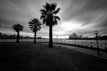 Syndey opera house in zwart en wit