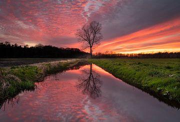 Spectaculaire zonsondergang van Yme Raafs