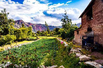 Het levendige land in Sacred Valley, Peru van