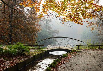 Wandelbrug in het mistige herfstbos van Marlies Reimering