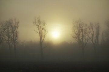 Mist van Hans Heemsbergen