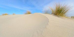 Zandduinen op het strand van Schiermonnikoog in de Waddenzee van