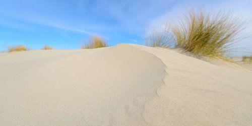 Zandduinen op het strand van Schiermonnikoog in de Waddenzee van Sjoerd van der Wal