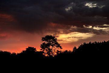 zon na de storm van Johan Strijckers