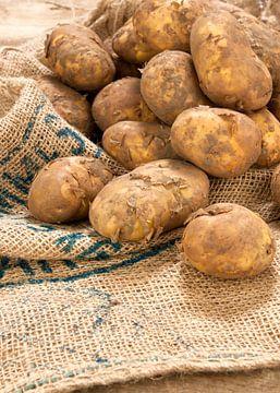 légumes0267b sur Liesbeth Govers voor omdewest.com