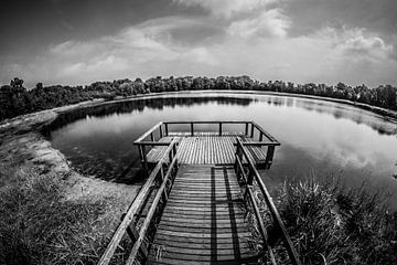 Rozenven op landgoed Visdonk in Roosendaal (Brabant) (zwartwit) von Fotografie Jeronimo