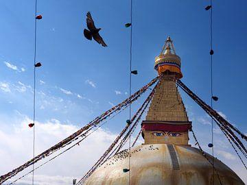 Bouddhanath Stupa Kathmandu Nepal van Ryan FKJ