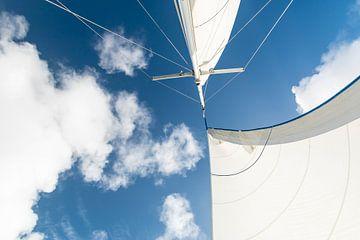 Detail van de zeilen van een zeilboot van Nannie van der Wal