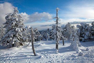 Impressions hivernales du Brocken (Harz) sur t.ART