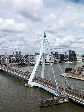 Erasmusbrug Rotterdam (staand - kleur) van Rick Van der Poorten