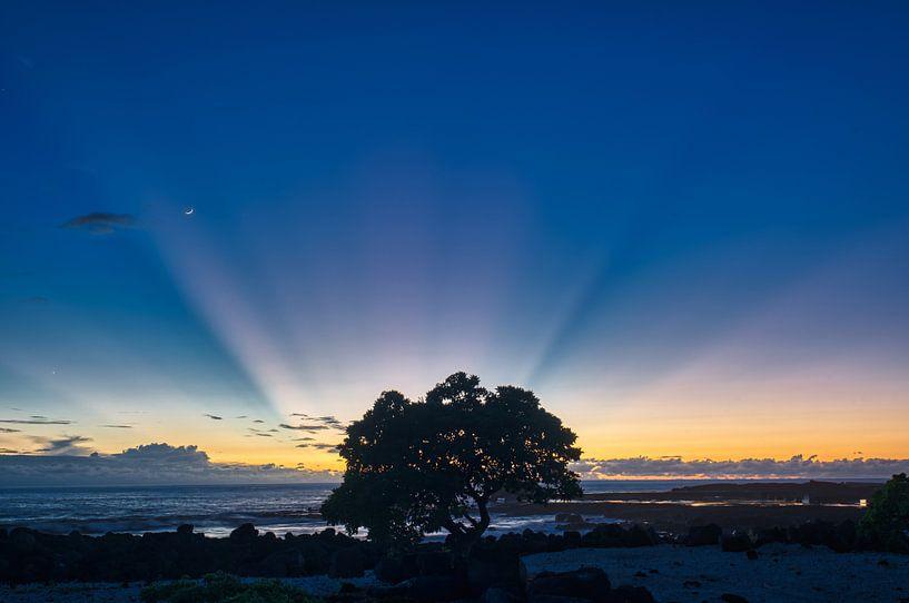 rays of light van Jim De Sitter