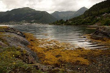 sognefjord im Herbst von Karijn Seldam