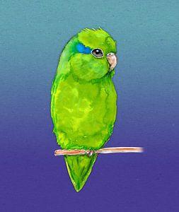 Groene forpus aquarel van Bianca Wisseloo