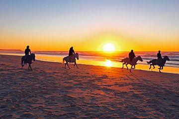 Paardrijden op het strand bij zonsondergang van Nisangha Masselink