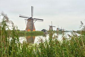 Semaine de l'éclairage de Kinderdijk 2020