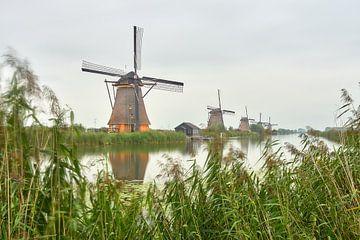 Kinderdijk-Beleuchtungswoche 2020 von Ad Jekel