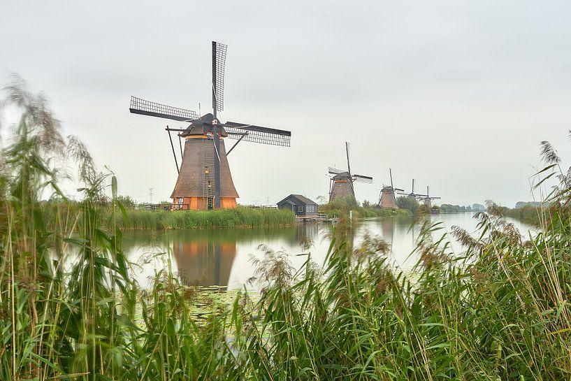 Semaine de l'éclairage de Kinderdijk 2020 sur Ad Jekel