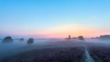 Sonnenaufgang Gasterse Duinen Drenthe Niederlande Heide sur R Smallenbroek
