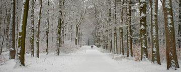 Winter wandelaars van Cor de Hamer
