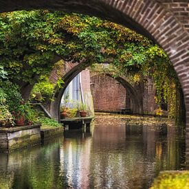 De Kromme Nieuwegracht in Utrecht in de herfst. von De Utrechtse Grachten