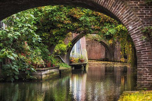 De Kromme Nieuwegracht in Utrecht in de herfst. van