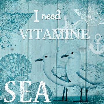 Ich brauche Meer! van