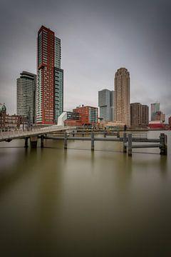 Rotterdam overdag van Albert Mendelewski